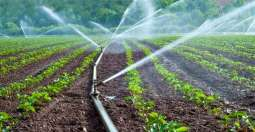 Grow Stream technology for irrigation installed at NARC