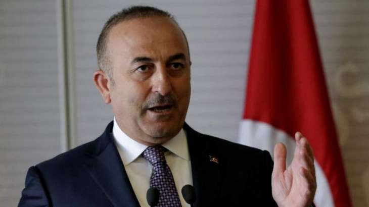 Turkey to Respond Reciprocally to US Sanctions Over Operation in Syria - Foreign Minister