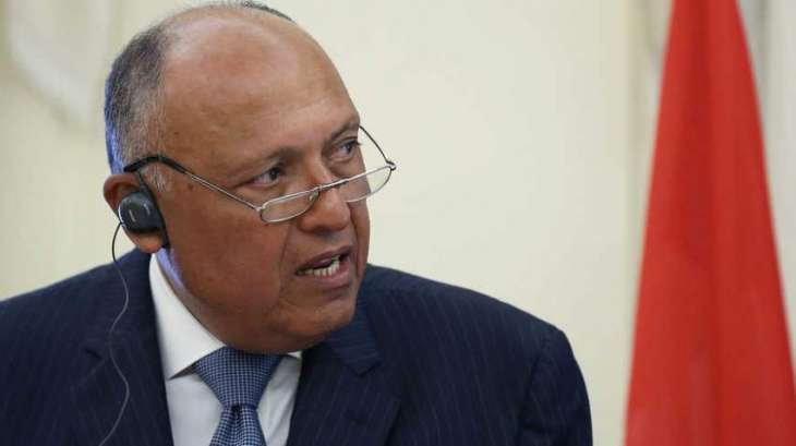 Africa Is Interested in Russia's Technologies, Energy Experience - , Egyptian Foreign Minister Sameh Shoukry