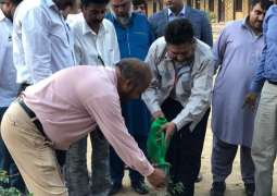 WWF-Pakistan and Indus Motor Companypartner for clean and green Karachi