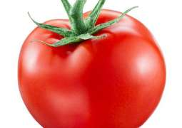 Price of per kg tomato exceeds value of single US dollar in Pakistan