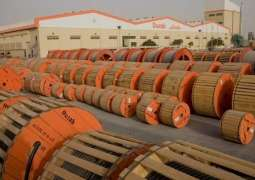 Ducab supplies 90 percent of Expo 2020 Dubai cables: Ducab CEO