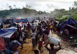 Netherlands Provides $4.3Mln for Rohingya Refugees in Bangladesh - UN Food Agency