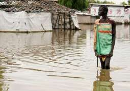 UN Refugee Agency Issues $10Mln Emergency Appeal for South Sudan Flood Victims - Statement