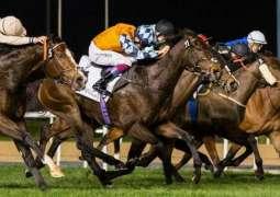 2020 Dubai World Cup Carnival accepted horses announced
