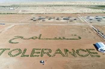 EAD creates Oasis of tolerance