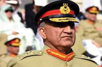 Pakistan has set on journey  to prosperity after sacrifices of security officials: Army Chief