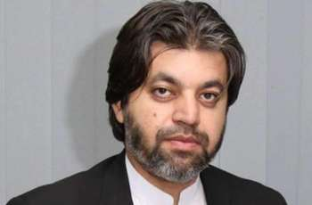 No record of $200 billion in foreign countries available with government: Ali Muhammad