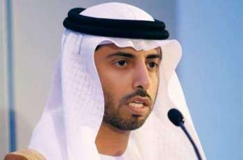 UAE committed to OPEC output cut deal to ensure market balance: Al Mazrouei