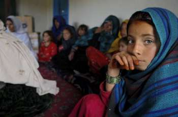 UK, Afghanistan Form Group of Friends at UN to Protect Women's Rights - Afghan Envoy