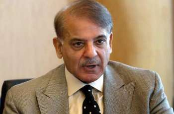 Shehbaz Sharif resigns as PAC Chairman