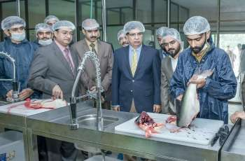 UE Vice-Chancellor Prof TalatNaseer Pasha inaugurate Fish Processing Unit on World Fisheries Day observed at Ravi Campus