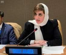 المملكة تؤكد أن القضية الفلسطينية ستظل على مقدمة أجندتها السياسية الخارجية