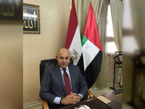 Visit of President El Sisi to UAE comes at important time: Egyptian Ambassador