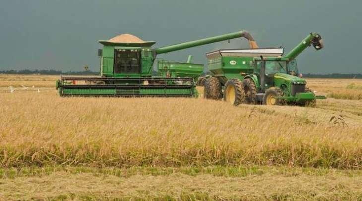 US, S. Korea Reach Annual Rice Export Deal Worth More Than $100Mln - Trade Representative