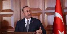 Turkey Received No GNA Request for Military Help Amid Fresh Assault on Tripoli - Cavusoglu