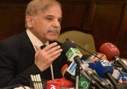 Shehbaz Sharif lashes out at PM Khan, says assets frozen after Niazi-NAB nexus