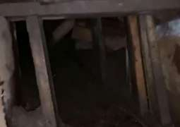 US, Mexico Authorities Discover Smuggling Tunnel Under Border - Customs Agency