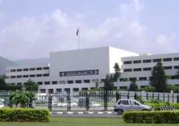 Senate's body listens public's view on important constitutional issues