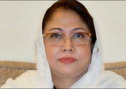 Election Commission of Pakistan (ECP) puts off PTI petition for disqualification of Faryal Talpur