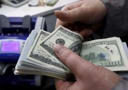 Pakistan's foreign exchange reserves swell to nine-month high of $17.29 billion