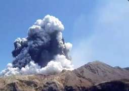 New Zealand volcano: PM Ardern says questions must be 'asked and answered'