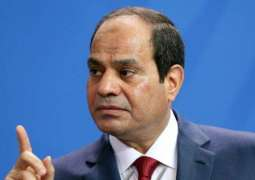 Political Solution to Libyan Crisis to Be Reached Within Months - Egyptian President