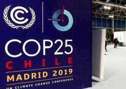COP25 Participants in Madrid Call for More Ambitious Final Agreement - Coordinator