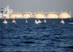 Purpose of US Sanctions on Russia to Promote Its LNG in European Markets - German Lawmaker