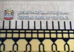396.2 مليار درهم رصيد استثمارات البنوك الإماراتية مع نهاية نوفمبر
