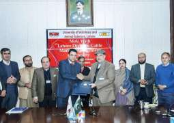 UVAS sign MoU with Lahore Division Cattle Market Management Company for improving bilateral association