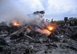 Russia Ready to Provide Netherlands With Information About MH17 Crash - Russia's EU Envoy