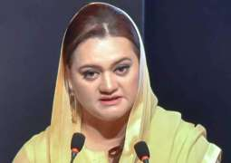 PM Imran government turns into tyrannical government: Marriyam Aurangzeb