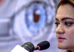 "Marriyum Aurangzeb says PM calling ""media mafia"" is embarrassing"