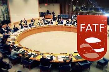 Pakistan's economic team to appear before FATF today