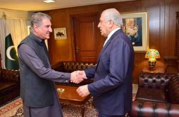 Zalmay Khalilzad, FM Qureshi discuss Afghan peace process