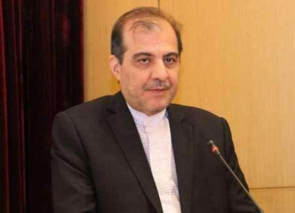 Next Round of Syrian Constitutional Committee to Take Place 'Soon' - Iranian Delegate