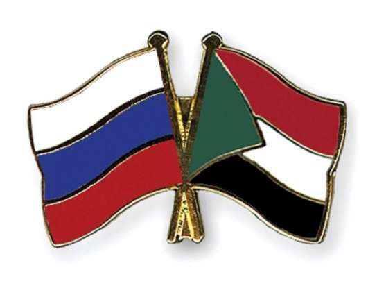 Russian Environment Ministry Discusses Projects in Metallurgy, Mining With Sudan -Official