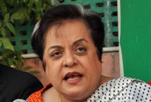 IR is dynamic & cross cutting discipline that needs to be predictive in nature: Dr Mazari
