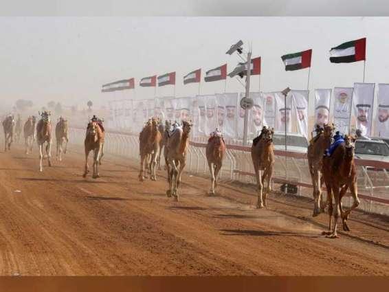 """الدورة التاسعة """" لمهرجان محمد بن زايد لسباقات الهجن """" تنطلق 23 ديسمبر برأس الخيمة"""