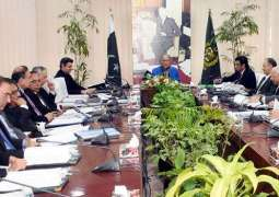 ECC approves grant of one billion for PTDC