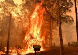 Australia bushfires: Mega blaze likely on Friday evening