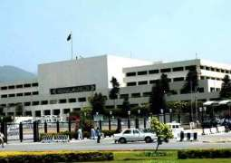 Senate's body for level playing field in education , health sectors for merged districts