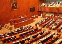 Senate Functional Committee raises objection over Zenab Alert Bill