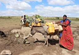 Climate Change, Violence Keep Millions in East Africa in 'Near-Constant Crisis' - ICRC