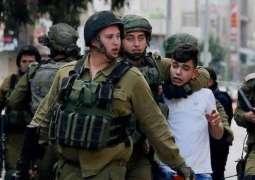 Israeli Soldiers Detain 11 Palestinians in Occupied Territories - Watchdog
