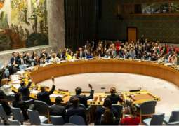 UNSC Playing Crucial Role in Preventing Change of Power in Venezuela - Saint Vincent