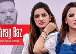 Hareem Shah's video song goes viral