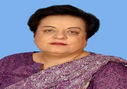 Shireen Mazari submitted report in Islamabad High Court