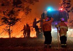 Bushfires in Australia Sign of 'Approaching Climate Disaster' - Nobel Laureate